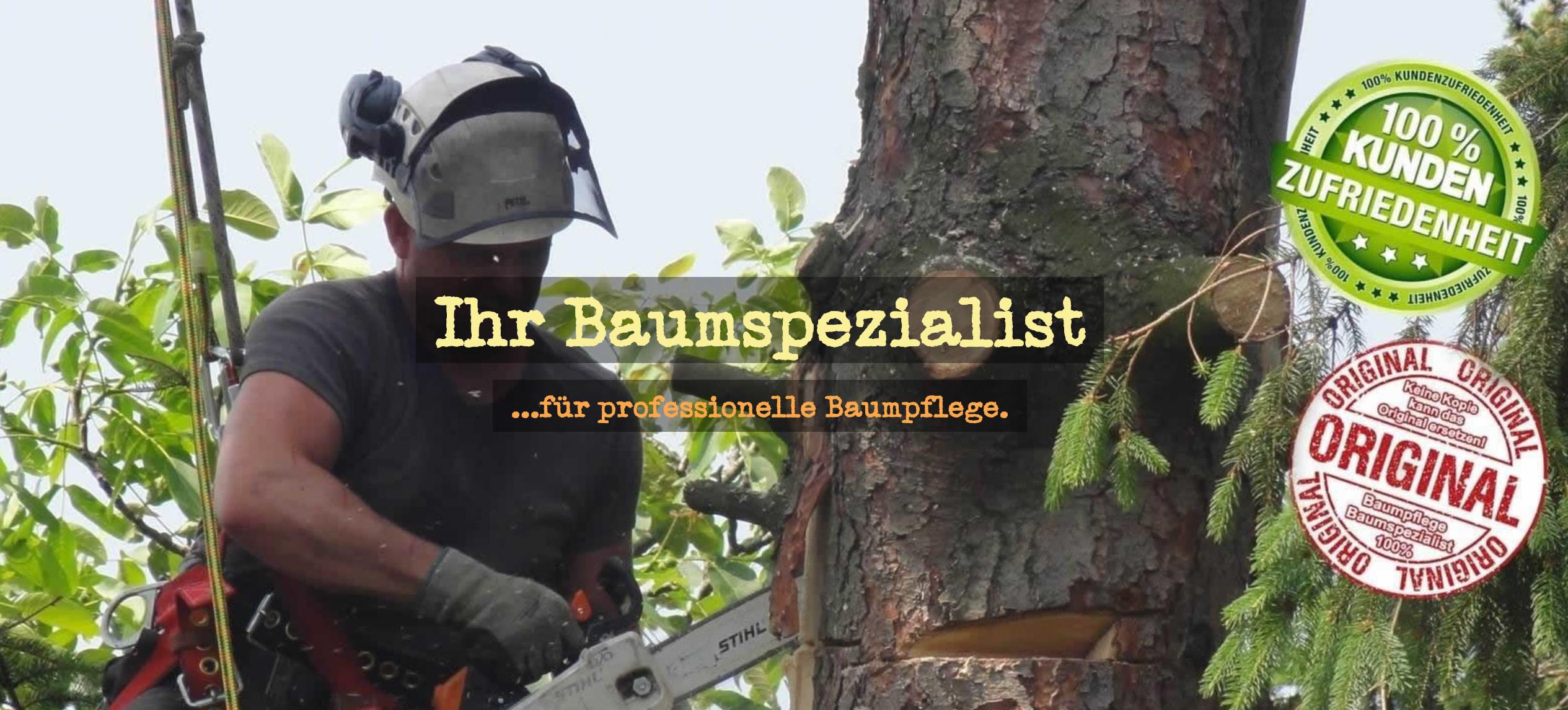 Baumpflege Kuppenheim | 🥇 Stefan Reuschling ➤ Baumspezialist / ✓ Baumfällung